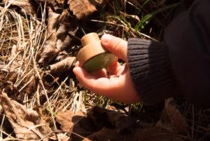 gałki dzieciece - zielone emaliowane - w lesie